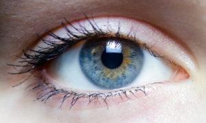 eyes north cyprus