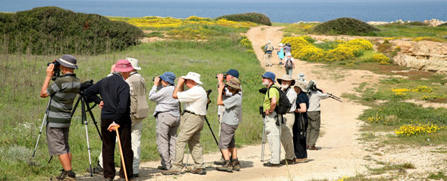 bird_watching_north_cyprus_norra_cypern_magasinet