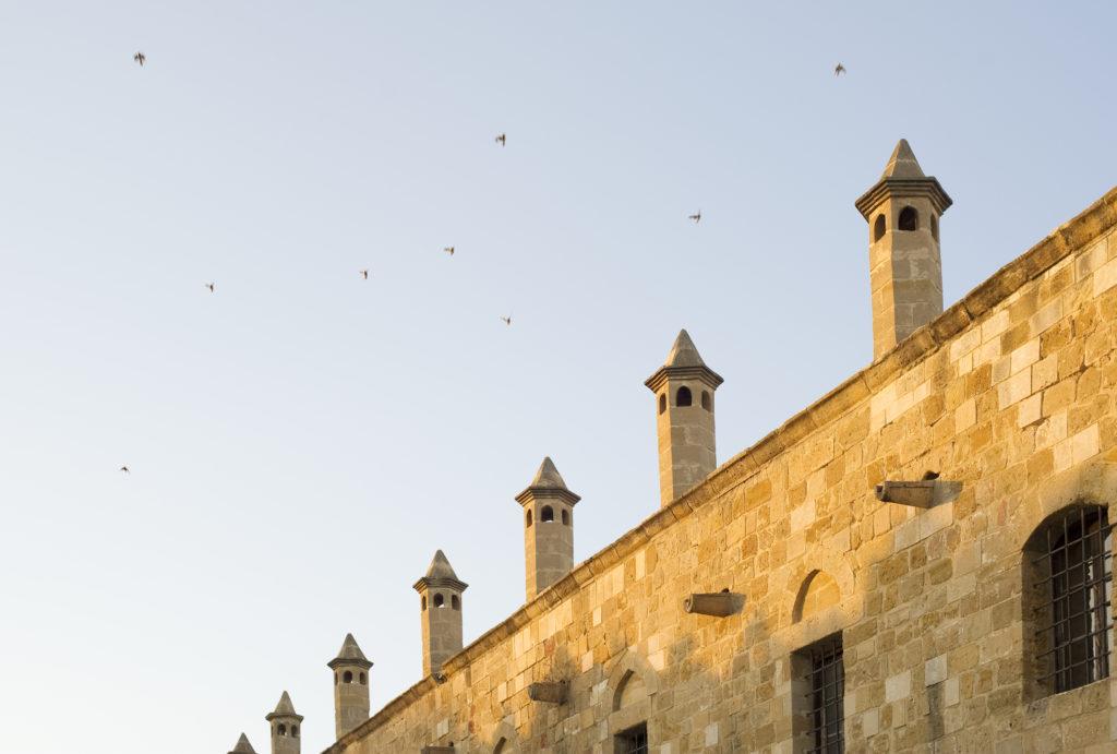 north-cyprus-2015-archieve-sky-birds