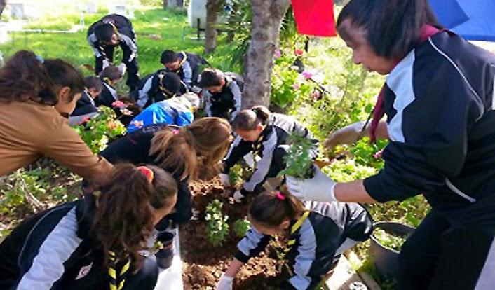 sos-children-planting-trees-north-cyprus