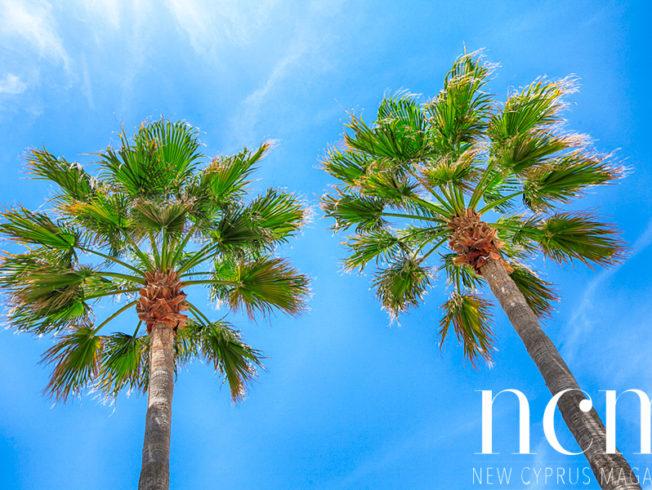 Cyprus sunny weekend
