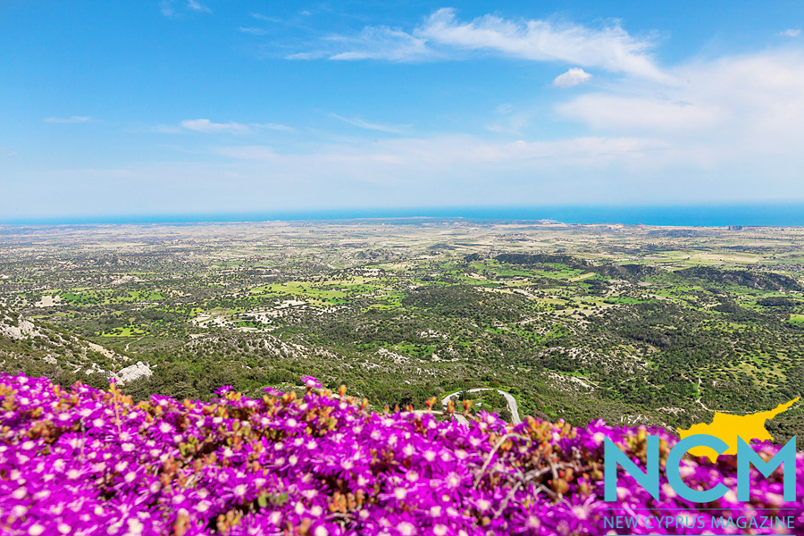 north-cyprus-view-flowers