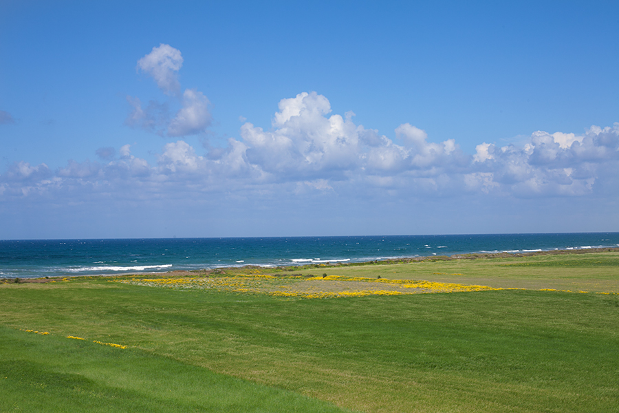 north-cyprus-2015-green-field-sea