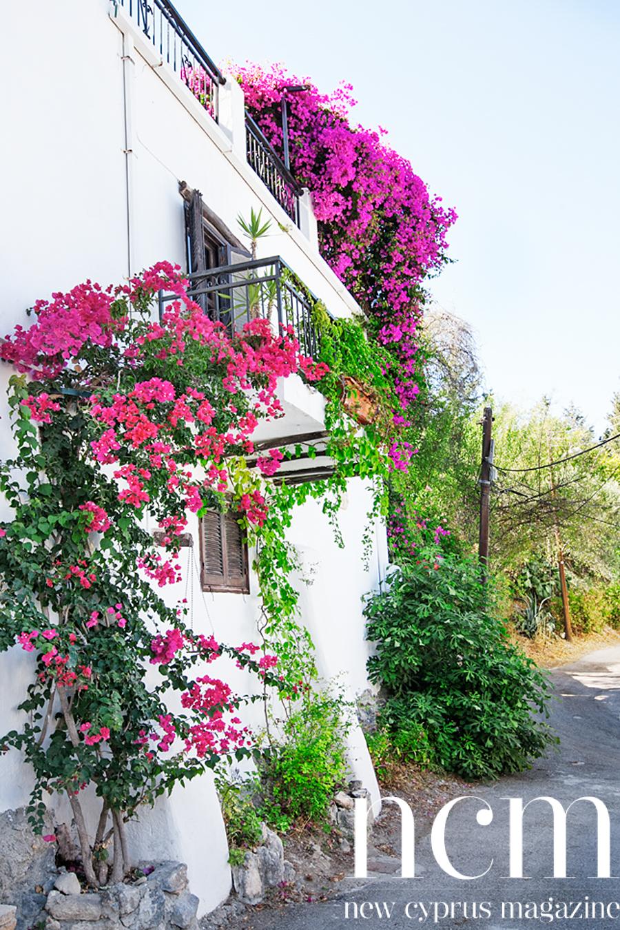 House in Karmi, North Cyprus