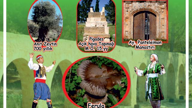 Eco-days in North Cyprus