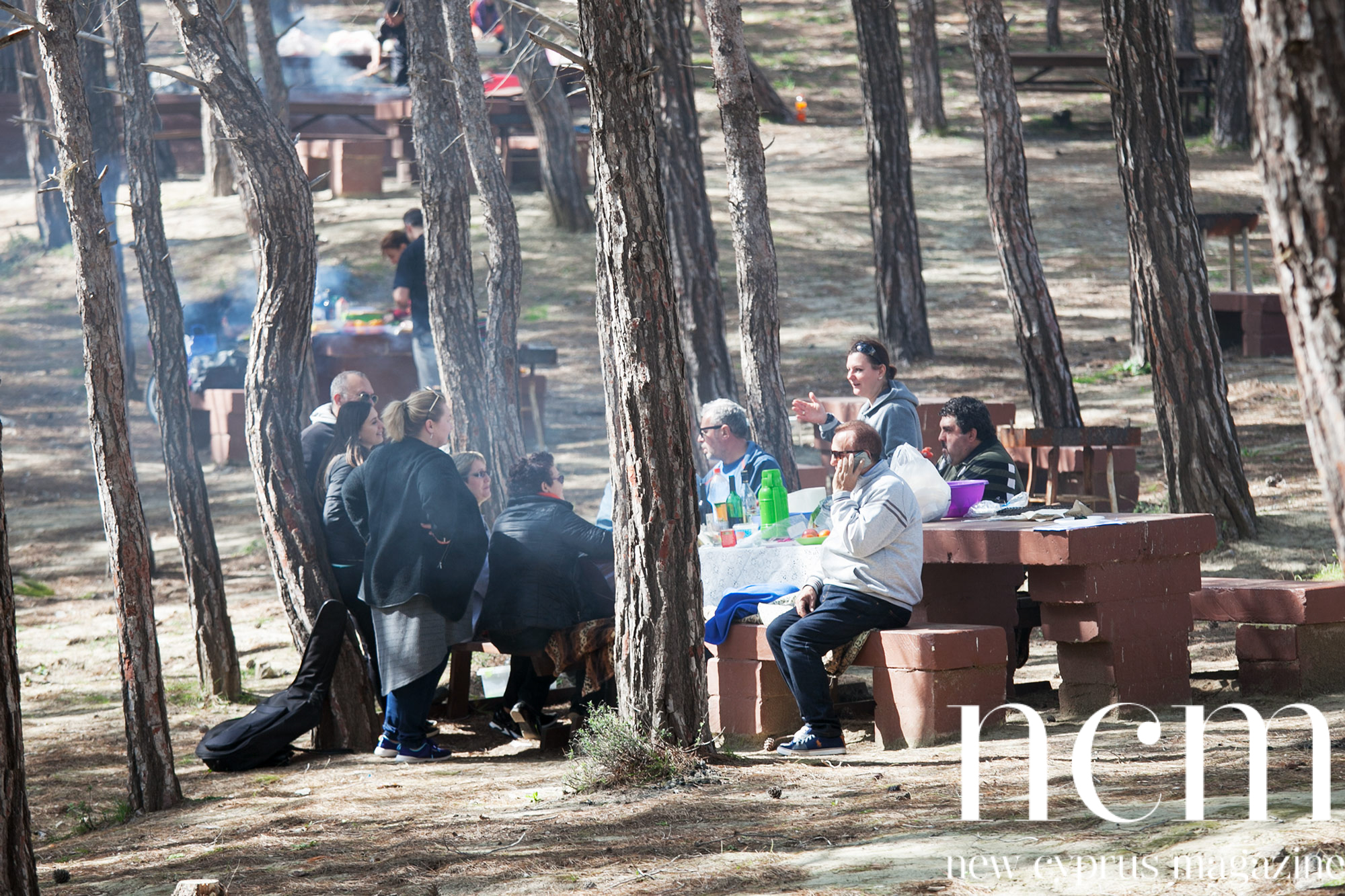 Bbq at picnic area during Kozan nature experience
