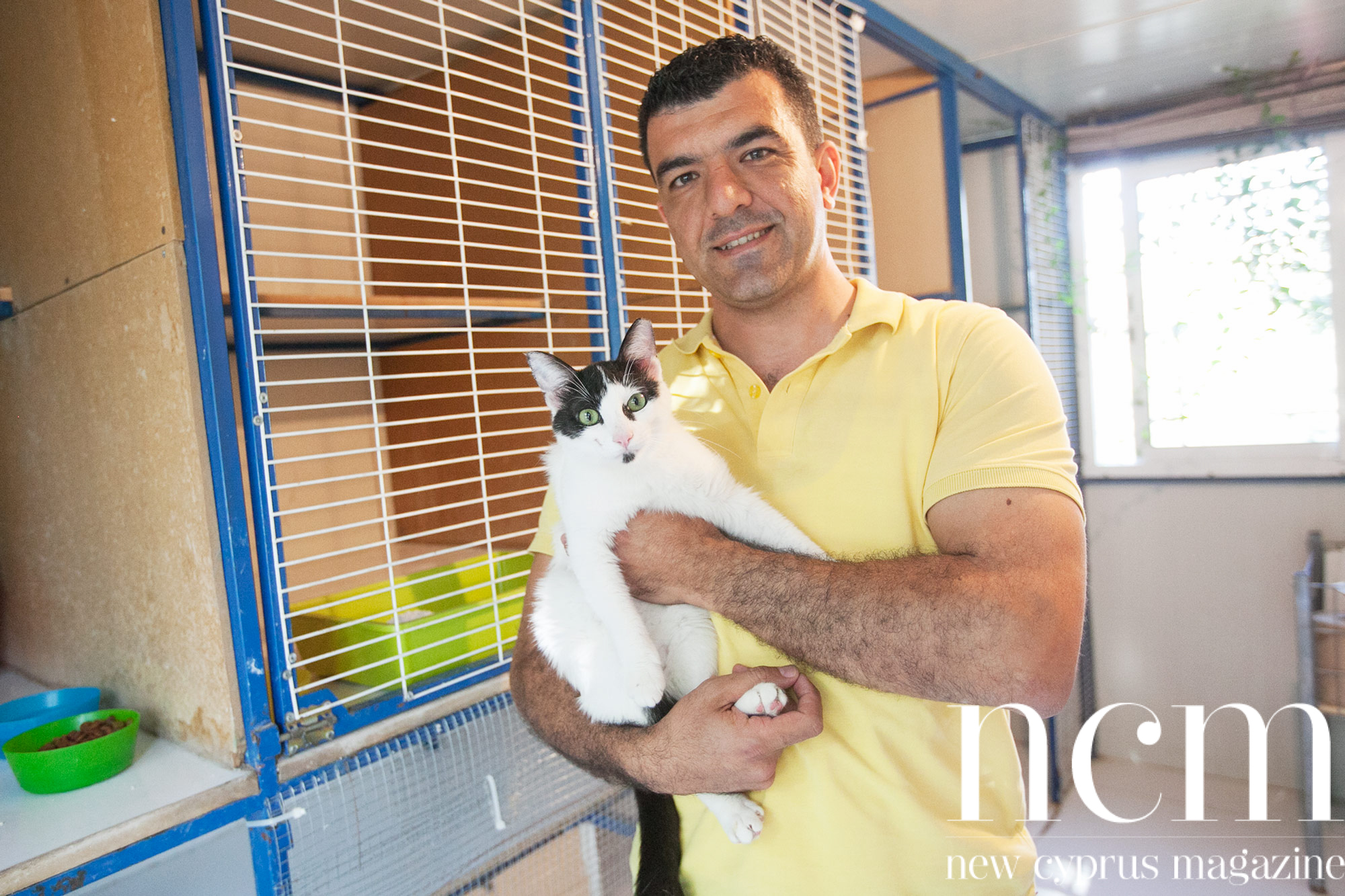 Pet Line Veterinary