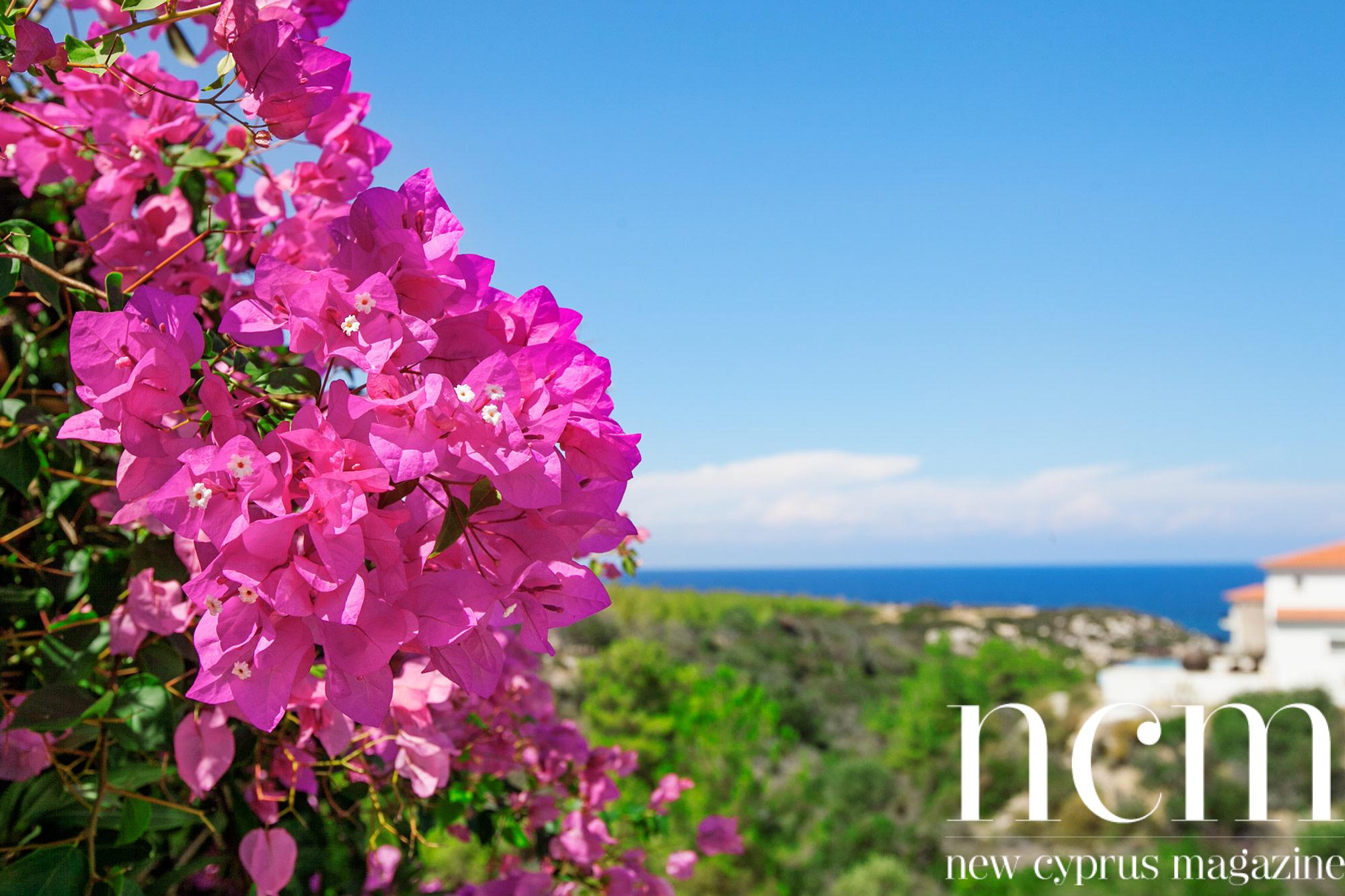 Cypern_2014_J09283