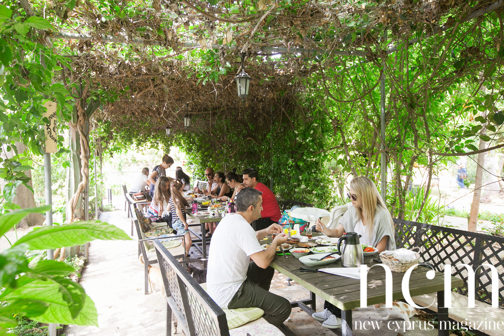 Start the day with breakfast in the botanic garden